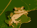 Frog by apparate