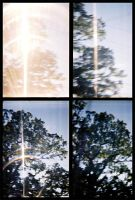 lomo - drive by blinding by mr-amateur