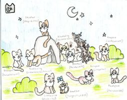 Cats From Warriors FINISHED by Step-kitten