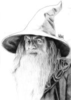 Gandalf by NeVi-RuS
