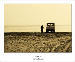 Different Paths-sepia by el3sl