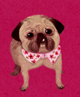 Commission: Yurii the pug by AmourFonce