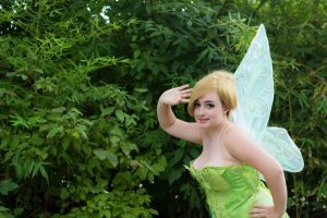 tinkerbell 3 by narutine