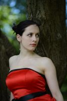 Red Satin Portrait 10 by Anariel-Stock