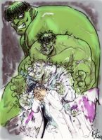 Hulk transformation colored by scarecrowhassan