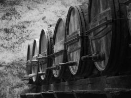 Wine Barrels by TaliNatPhotography