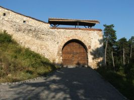 Road Gate - Rasnov Fortress by A-Xander