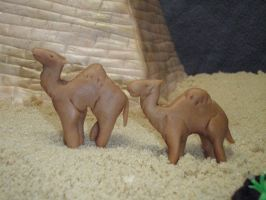 Camels close up by SarahMame