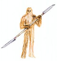 Wookiee by SkyWookiee