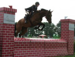 Horse Jumping 1 by Amethyst--Dragon