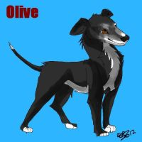 Olive the greyhound by Daisylasy3