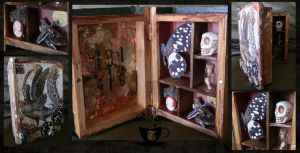 prototype cabinet of curiosities - the oracle by Tariray