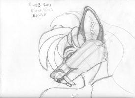 Anthro heads after Foley 18 by Dr-Pen