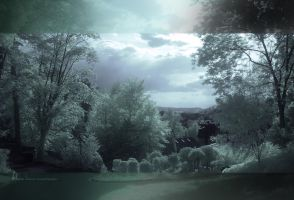 IR1 by TND-Photography