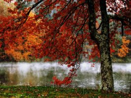October in New England by heatherspettals