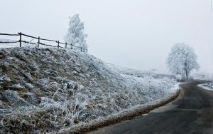 Winter in Goldap, PL by powicher