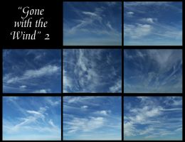 Gone with the wind - 2 by Hermit-stock