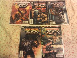 MARVEL KNIGHTS Wolverine and Punisher Issue 1 to 5 by Rylverine