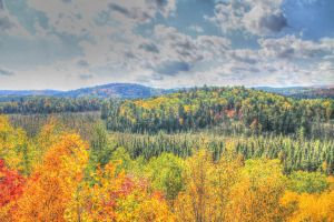 Just Another Beautiful Expanse in Algonquin by BlackArrowPhotos