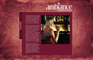 Ambiance Website Concept by live-without-borders