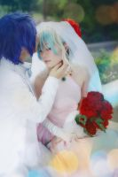 marry by haruka41