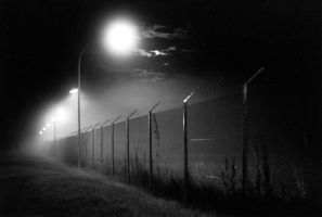 Barbwire Fog by Spellduckwrong