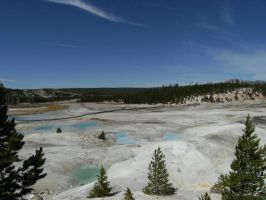 Norris Geyser Basin View 2 by rioka