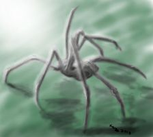 my ugly spider by templarioart