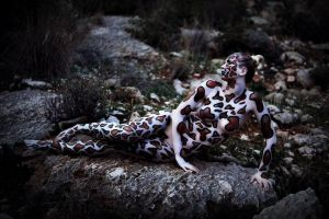 Reptile  body paint by ElizabethPetroumua