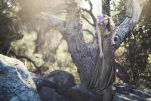 Elfin Forest by EmilySoto