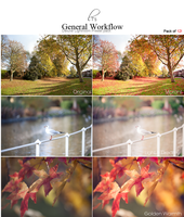General Workflow Lightroom Preset of 12 by Lady-Tori