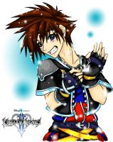 My name is Sora by Elairin