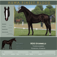 HEWA Finest RDS Stormeld by Jullelin