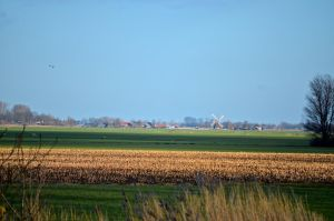 The flat lands of Holland by cogibear