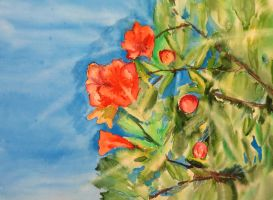 Under the shade of a flowering pomegranate by Lidia-v-Essen