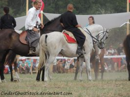 Hungarian Festival Stock 024 by CinderGhostStock