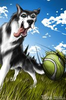 BALL by FigN01