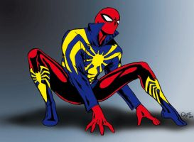 Spider-Man new costume concept by alain-gilot