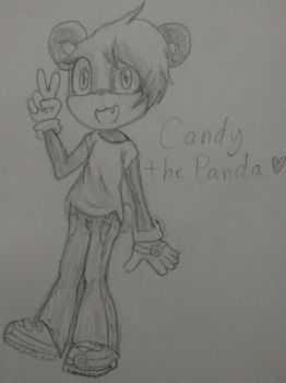 Candy the Panda (my sister's character) by StellarPixel64