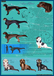 Canis Lytra_Species and characters sheet by Aquene-lupetta