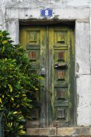 Green door by dbroglin