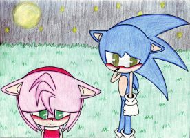 Sonic and Amy by MischiefLily