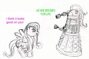 Fluttershy and a Dalek by JimmyPiranha