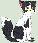 Cat Adoptable 6! -OPEN- by The-Adoptions