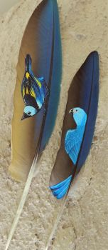 Feather paintings by Mekaisto