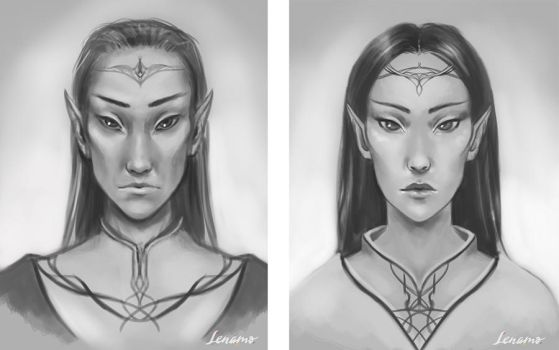 Commission: Sketch of elven male and female by LenamoArt