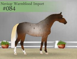 Import 84 by SweetStreamStables