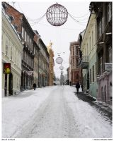 Street in Snow by danielnikolic