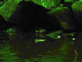 Night Vision Skull in the Stre by MorganCG