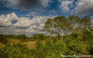 The National Park. Hungary. by magyarilaszlo